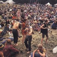 Woodstock 23