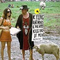 Woodstock 43